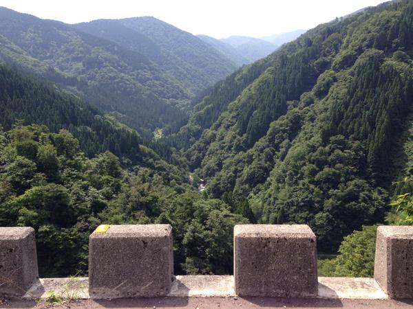 山の神林道
