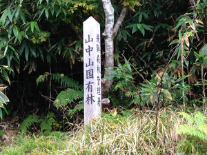 山中峠 2