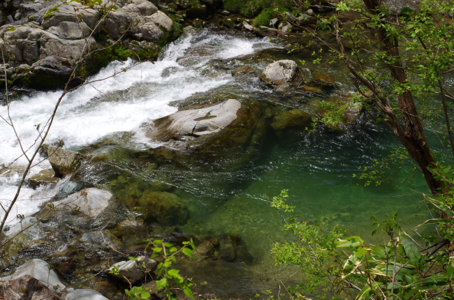 弓掛川 2