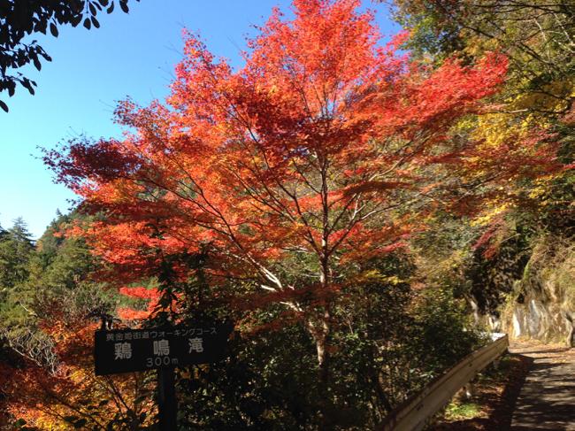 横谷峡 鶏鳴滝 3