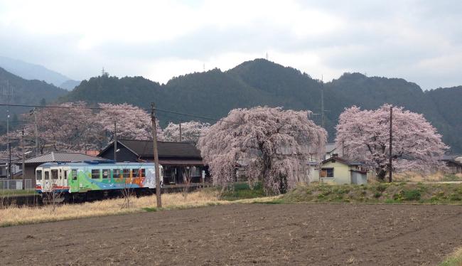 長良川鉄道 大矢駅 3