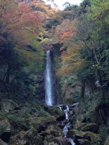 養老の滝 1