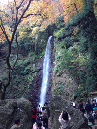 養老の滝 2