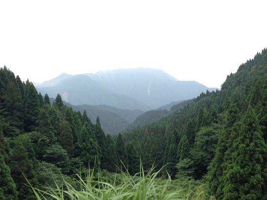 伊吹山(国見峠より)