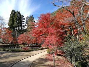 曽木公園 4
