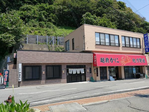 福井 越前町米ノ やまふじ 1