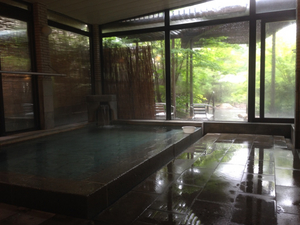 野の花山荘 風呂 01