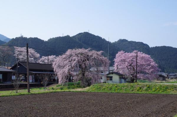 長良川鉄道 大矢駅 1